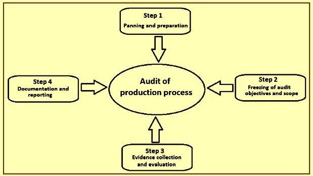 Factory audit process