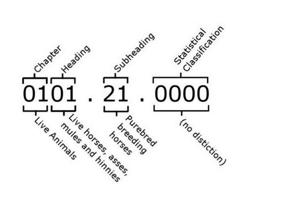 Figure 5 Breakdown of HS code