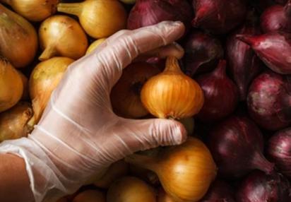 https://www.sourcingwise.com/wp-content/uploads/2021/09/food-inspection.png